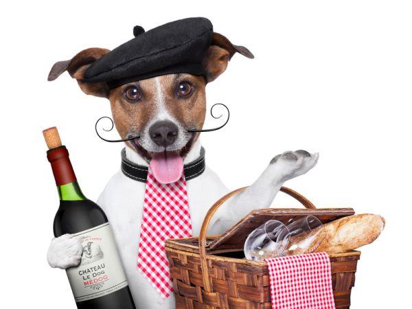 Französischer Gourmet Hund