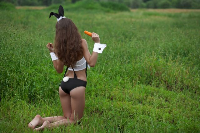 Petplay-Bunny mit Karotte auf grüner Wiese
